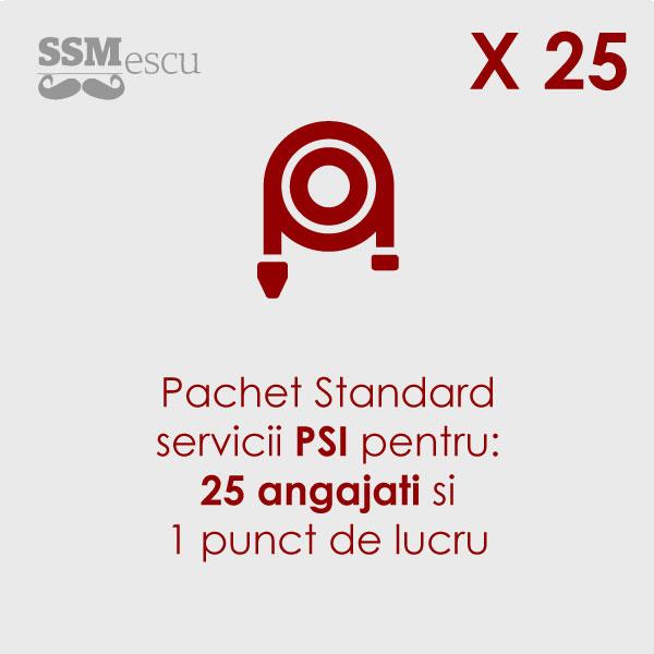 PSI pentru 25 angajati si 1 punct de lucru