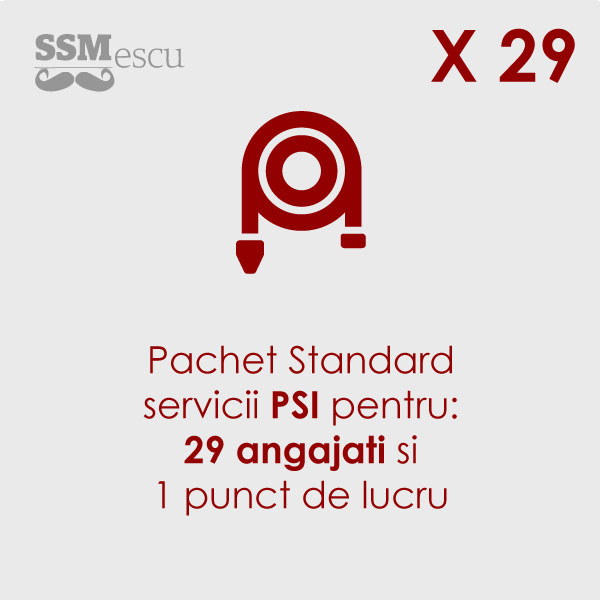 PSI pentru 29 angajati si 1 punct de lucru