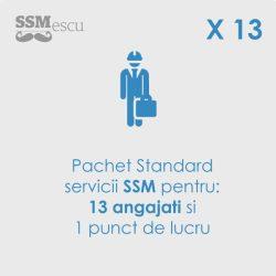 servicii-SSM-13-angajati