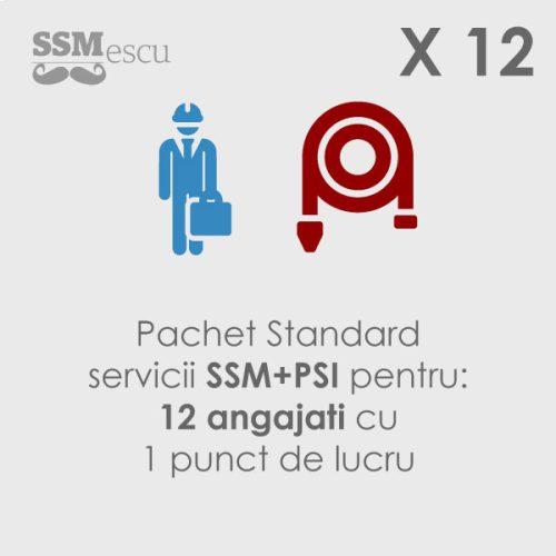 SSM si PSI pentru 12 angajati si 1 punct de lucru