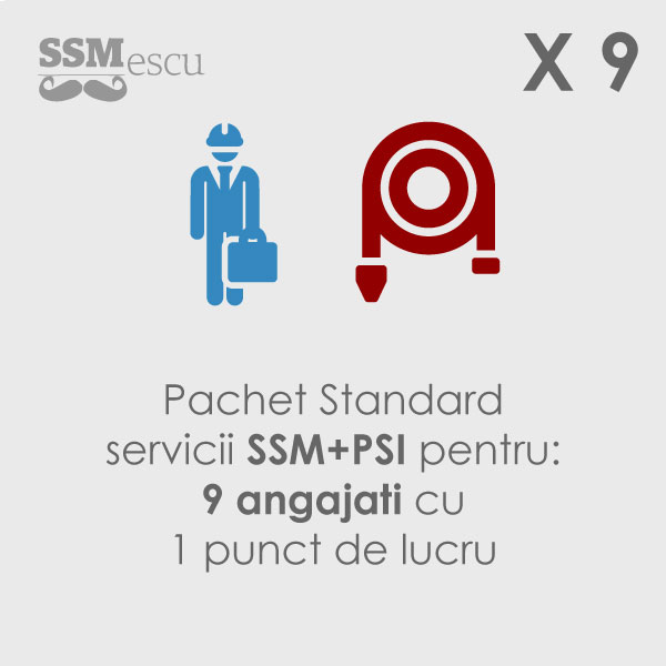 SSM + PSI pentru 9 angajati si 1 punct de lucru